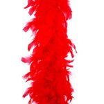 BOA PLUMES 2 M ROUGE